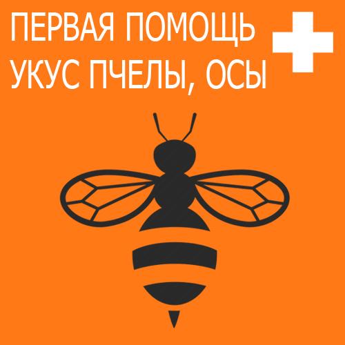 Первая помощь при укусе пчелы, осы, шмеля или шершня