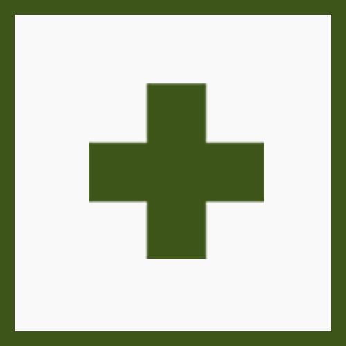 Анафилактический шок Неотложная помощь Симптомы Причины Формы